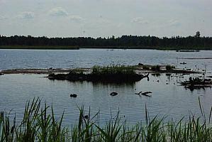 Praviršulio ežeras 2010