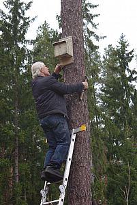 dr. Kazimieras Baranauskas surado tinkamų vietų, tikimės kad ir šikšnopsarniai suras